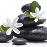 thiết bị spa, phụ kiện spa, bán đá massage, phân phối đá massage, phụ kiện spa giá rẻ, phụ kiện phòng xông hơi, phụ kiện phòng xông hơi, đá lạnh massage, đá nóng massage, chuyên bán đá massage, phân phối đá massage giá rẻ, bán đá massage rẻ nhất