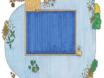 Quy trình xây dựng hồ bơi sinh thái