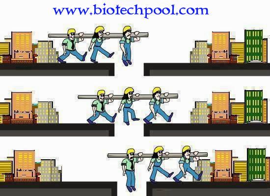BẠN ĐƯỢC GÌ KHI ĐẾN VỚI CHÚNG TÔI? GIÁ TRỊ BIOTECHPOOL, TẦM NHÌN BIOTECHPOOL, SỨ MỆNH BIOTECHPOOL, GIÁ TRỊ CỐT LÕI BIOTECHPOOL, ĐẾN VỚI BIOTECHPOOL BẠN ĐƯỢC GÌ?