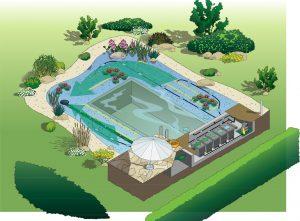 Hồ bơi thủy sinh tự nhiên, ho boi tu nhien, natural pool, thiết kế hồ bơi tự nhiên, thiết kế thi công hồ bơi, thiết kế hồ bơi thủy sinh, báo giá hồ bơi thủy sinh, bao gia ho boi thuy sinh, ho boi tu nhien