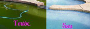 BẢO DƯỠNG VỆ SINH HỒ BƠI ĐÚNG CÁCH, thiết kế hồ bơi, thi công hồ bơi, thiết bị hồ bơi, xây dựng hồ bơi, hồ bơi thông minh, máy lọc hồ bơi, THIẾT KẾ XÂY DỰNG HỒ BƠI, THIẾT KẾ THI CÔNG HỒ BƠI, BÁN MÁY THIẾT BỊ HỒ BƠI, MÁY LỌC HỒ BƠI
