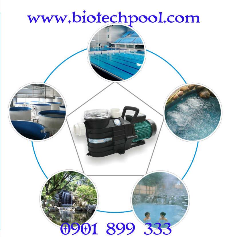 Chọn máy bơm phù hợp cho hồ bơi, xây dựng hồ bơi, máy lọc hồ bơi, thiết kế xây dựng hồ bơi, thiết bị hồ bơi, bảo trì hồ bơi, máy thiết bị hồ bơi, xử lý nước hồ bơi