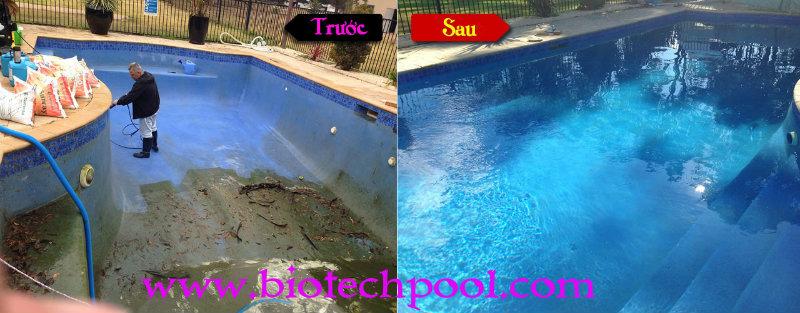 CHĂM SÓC HỒ BƠI CỦA BẠN, vệ sinh hồ bơi, bảo trì hồ bơi, thiết kế hồ bơi, xây dựng hồ bơi, thiết bị hồ bơi, bảo trì hồ bơi, cải tạo hồ bơi, máy lọc hồ bơi, máy thiết bị hồ bơi