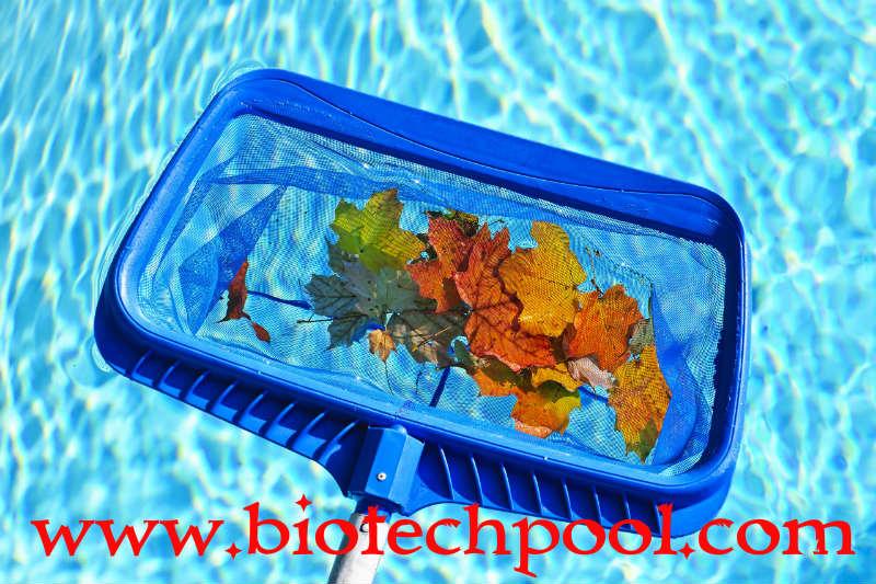 VỢT VỚT RÁC HỒ BƠI, máy lọc hồ bơi, thiết bị hồ bơi, thiết kế hồ bơi, thi công hồ bơi, bán vợt vớt rác giá rẻ, nơi bán vợt vớt rác hồ bơi