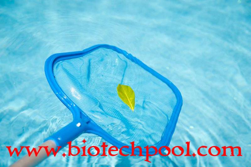 VỢT VỚT RÁC HỒ BƠI 02, máy lọc hồ bơi, thiết bị hồ bơi, thi công hồ bơi, thiết kế hồ bơi, bán vợt vớt rác hồ bơi giá tốt, cần mua vợt vớt rác hồ bơi